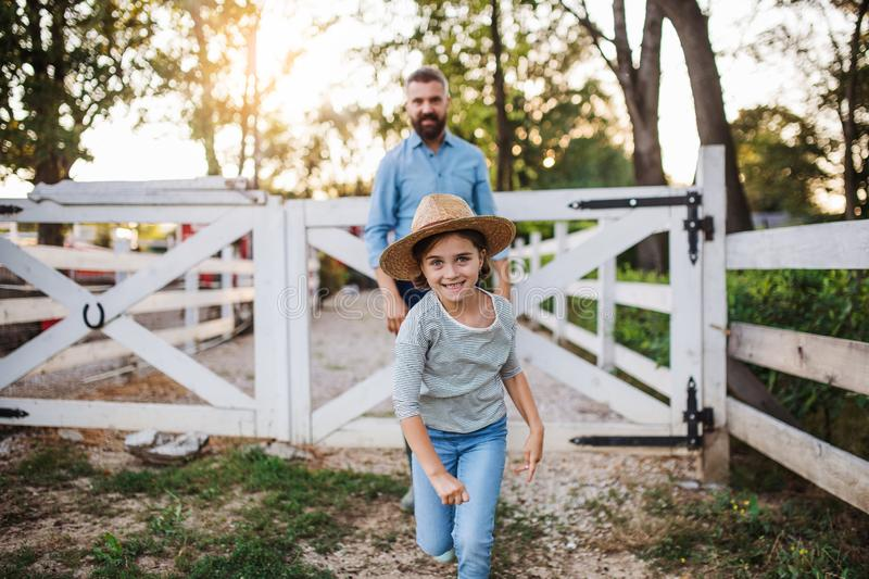 A father with small daughter walking outdoors on family farm. royalty free stock image