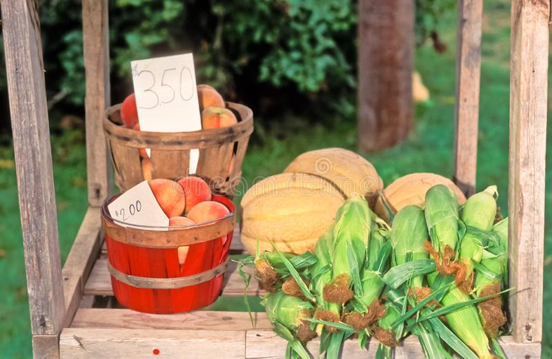 Mennonite roadside agriculture stand. Front view, medium distance of a  Mennonite roadside, agriculture stand of ripe, freshly picked, peaches, corn and melons stock images