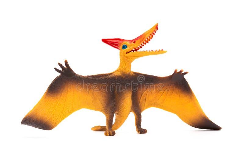 Front view orange pterosaurs toy on white background royalty free stock photo