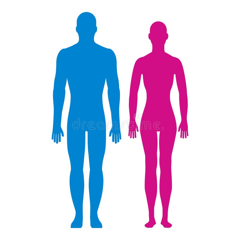 Front view silhouettes of man and woman. stock illustration