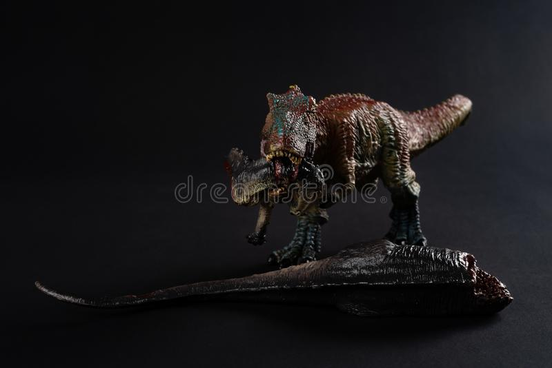Front view tyrannosaurus with a dinosaur body nearby on dark royalty free stock images
