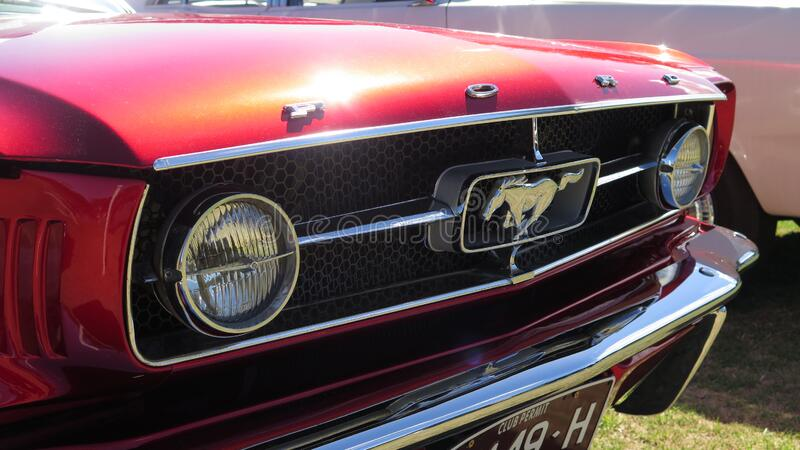 Front view of a vintage red Ford Mustang with horse riding logo in exhibition cars at Albert Park circuit, Melbourne. Front view of a vintage red Ford Mustang royalty free stock images