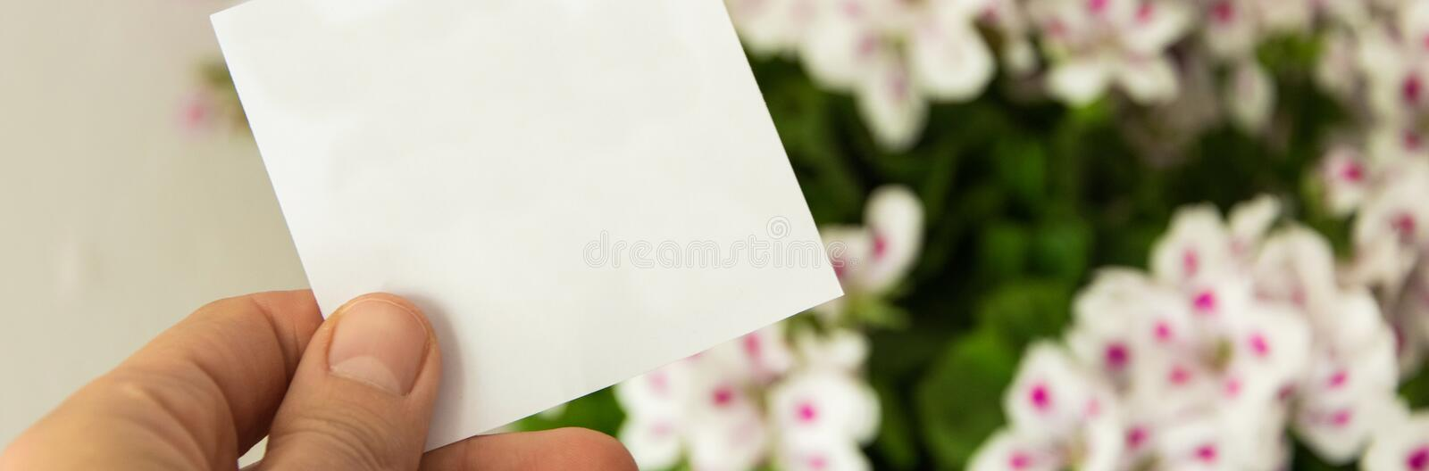 Front view of womans hand holding white card, Beautiful fresh flowers in background. Front view of womans hand holding white greeting card, Beautiful fresh royalty free stock image