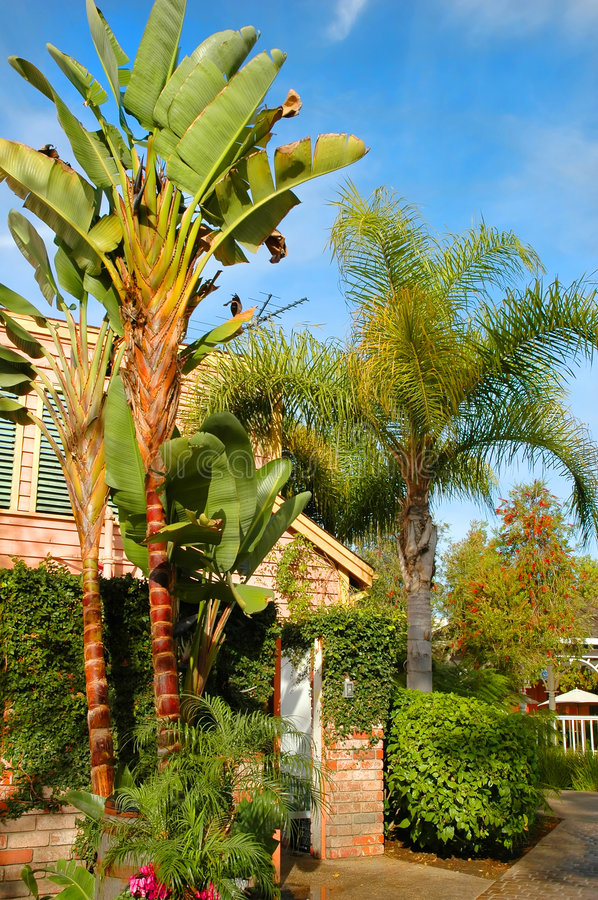 Download Front Yard Stock Photography - Image: 3362772