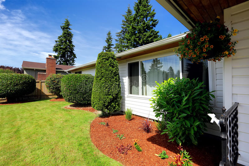 Front yard landscape with orange sawdust trim royalty free stock image
