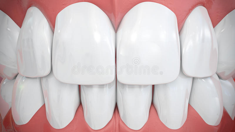 Frontal view on sparkling white anterior teeth stock photography