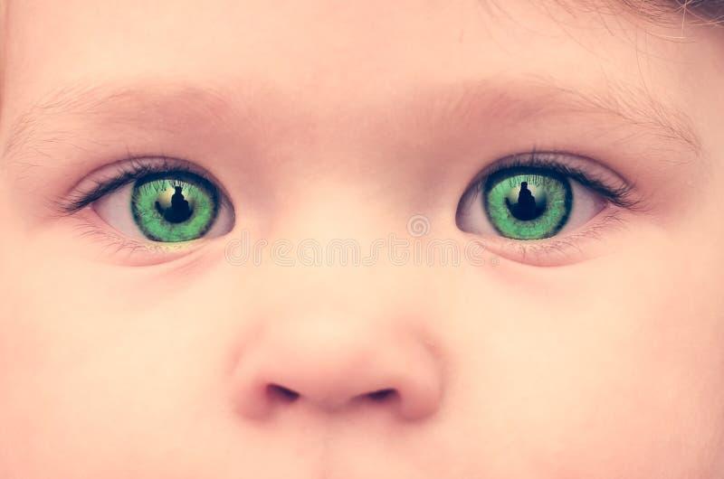 Fronte con gli occhi verdi, primo piano del bambino fotografie stock libere da diritti