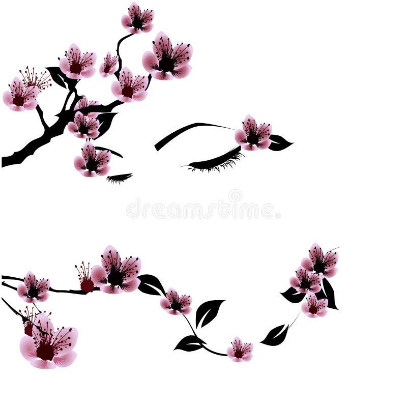 Fronte con i fiori della ciliegia royalty illustrazione gratis