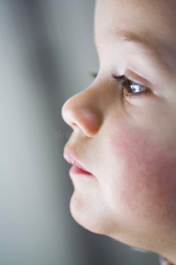 Fronte del bambino nel profilo fotografie stock libere da diritti