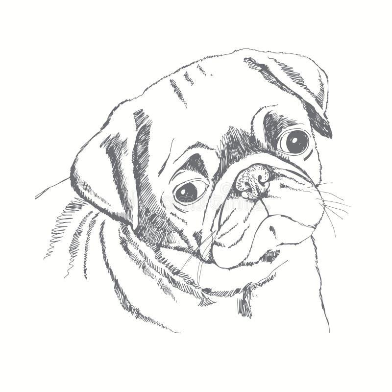 Fronte del cane del carlino Fronte delle donne disegnate a mano di illustration abbozzo illustrazione di stock
