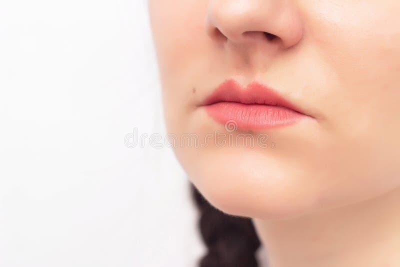 Fronte di bella ragazza su un fondo bianco e sulle labbra rosse, il concetto dell'aumento del labbro in chirurgia plastica ed est fotografia stock libera da diritti