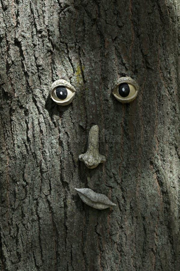 Fronte divertente dal lato di un tronco di albero fotografie stock
