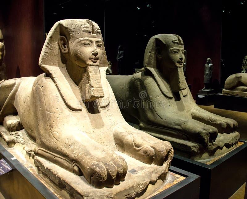 Fronte e corpo di una sfinge egiziana immagini stock libere da diritti