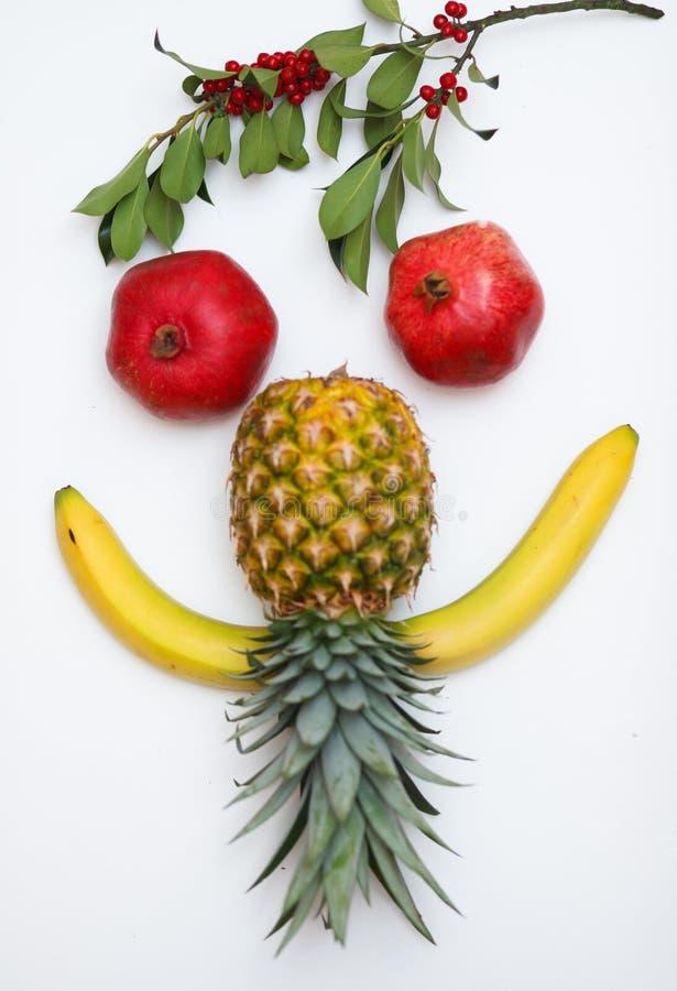 Fronte fatto della frutta immagini stock