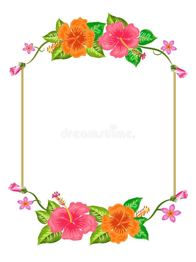 Frontera anaranjada rosada de las flores con los brotes fotografía de archivo