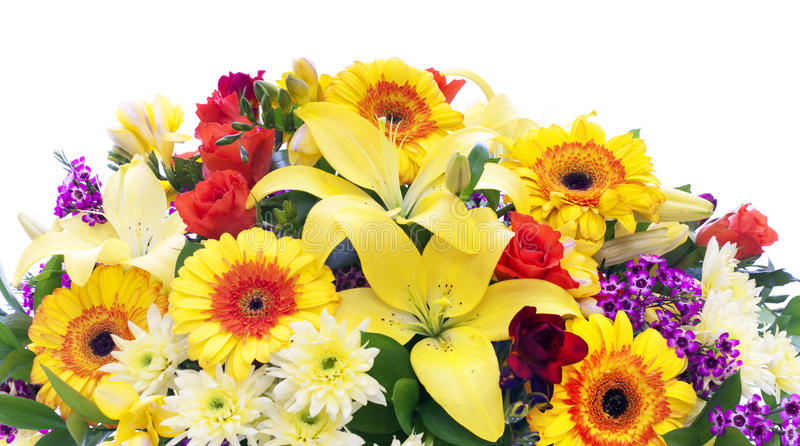 Frontera colorida de las flores enormes del resorte fotografía de archivo