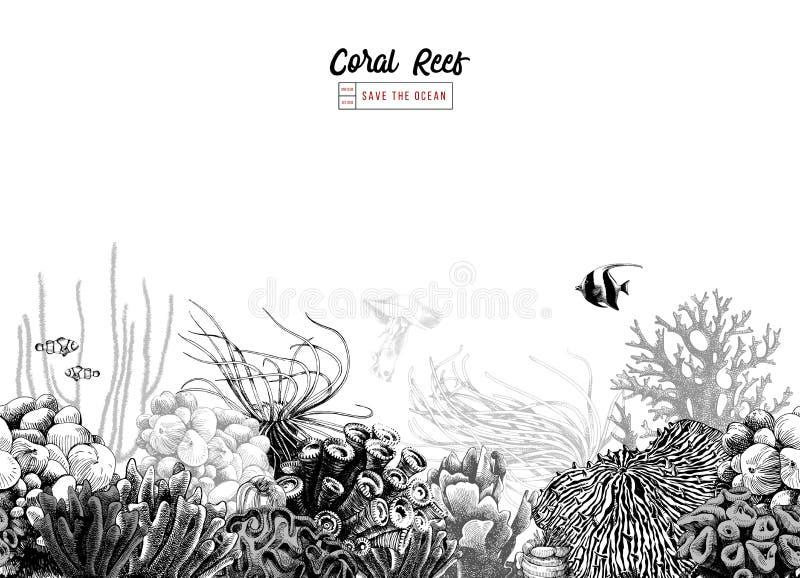 Frontera coralina blanco y negro dibujada mano stock de ilustración