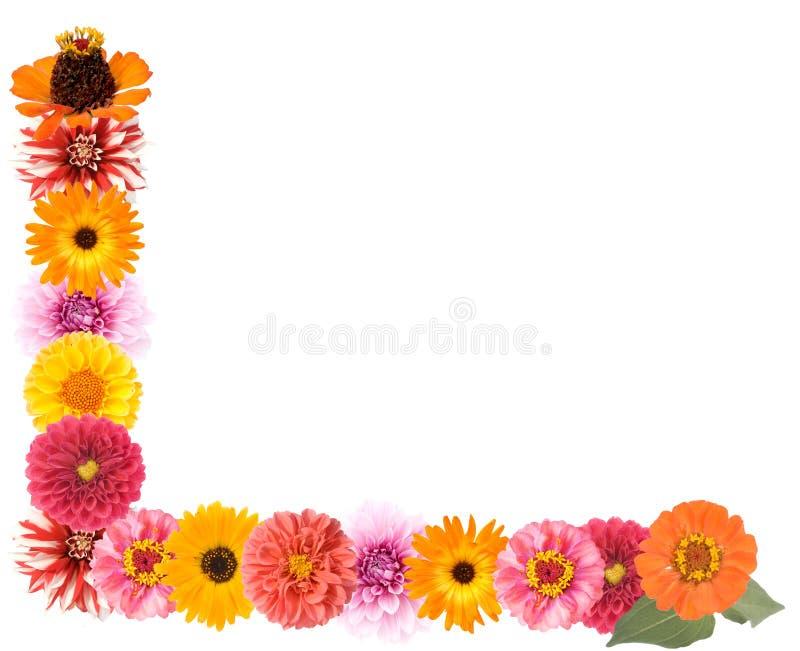 Frontera de la flor fotografía de archivo libre de regalías