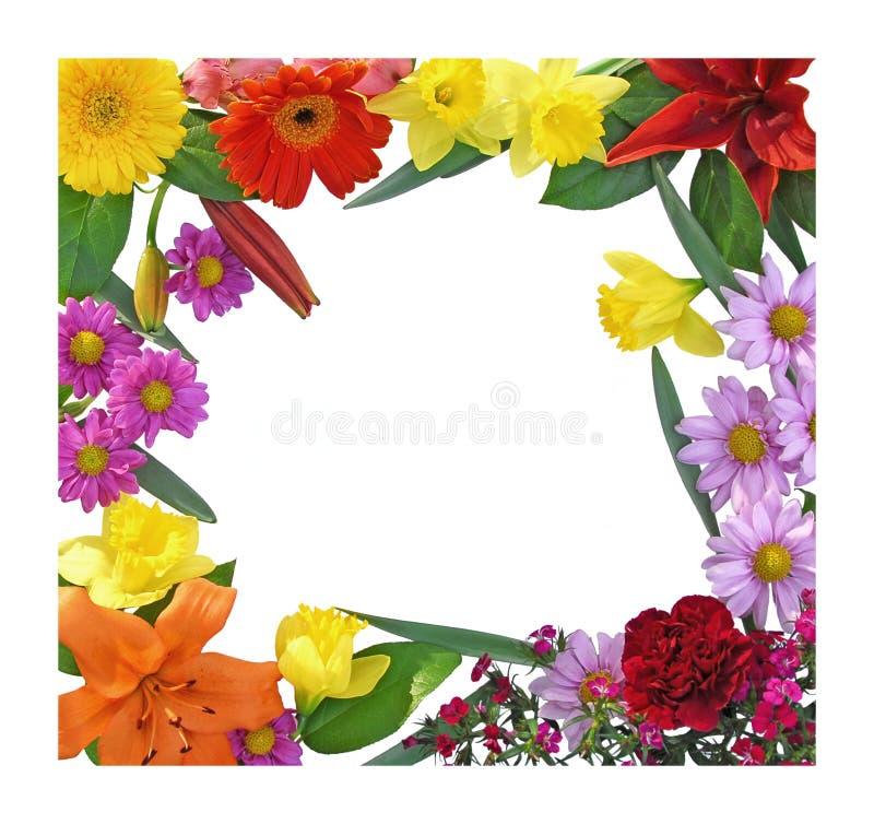Frontera de la flor del resorte foto de archivo libre de regalías