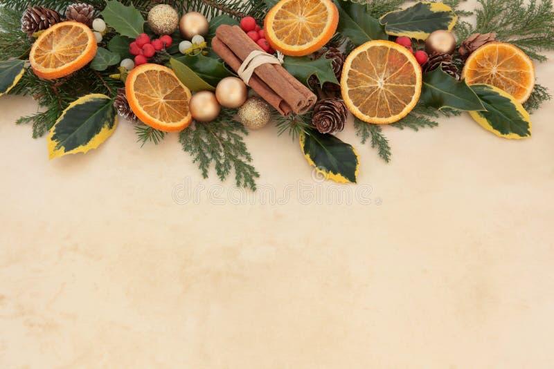 Frontera de la fruta del invierno foto de archivo libre de regalías