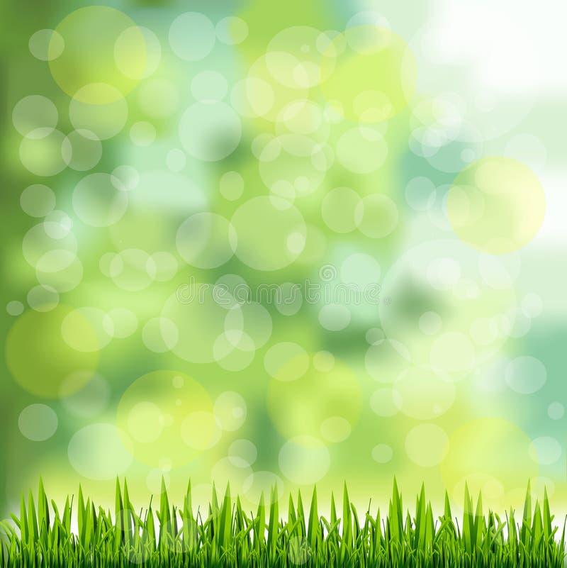 Frontera de la hierba en fondo verde natural stock de ilustración