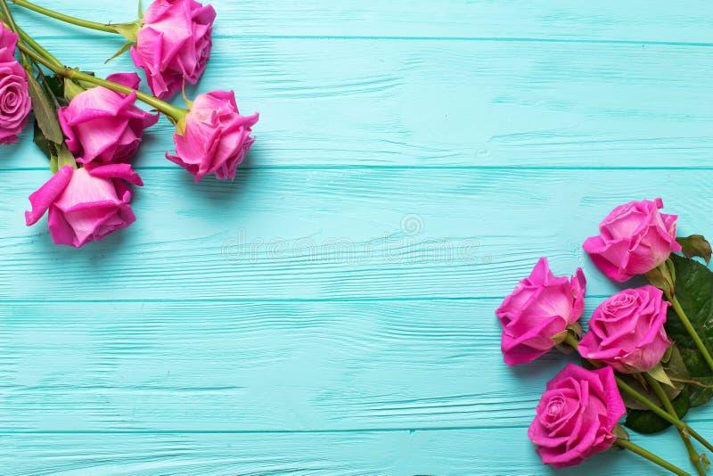 Frontera de las flores rosadas de las rosas fotografía de archivo