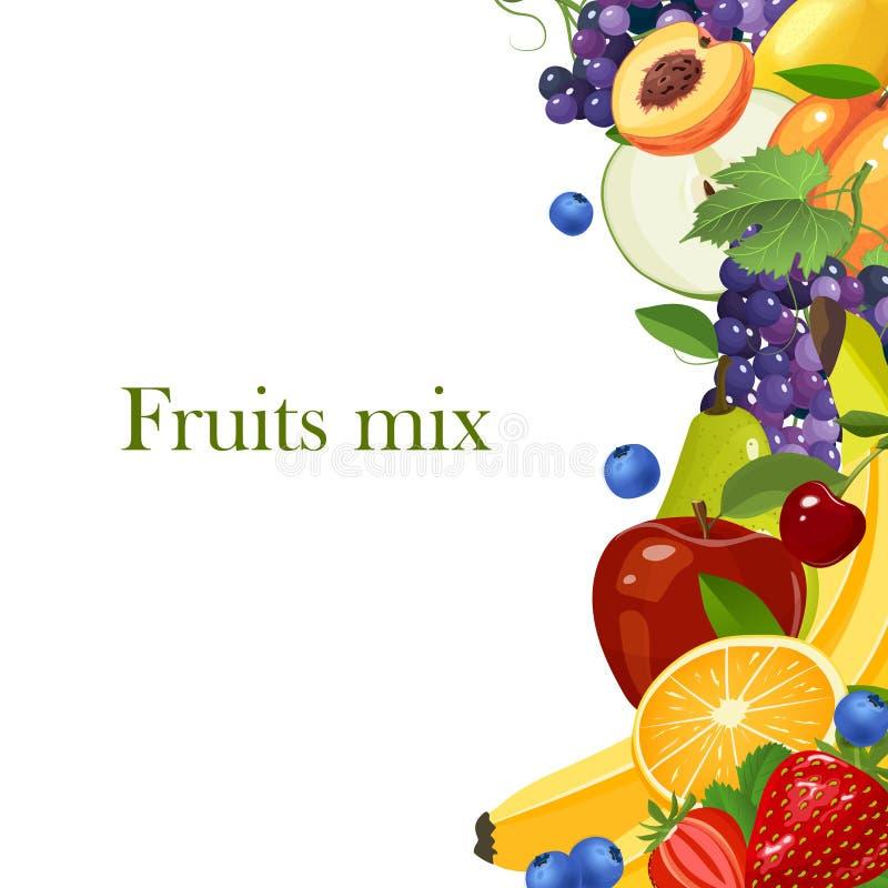 Frontera de las frutas aislada en el ejemplo blanco del vector del fondo libre illustration