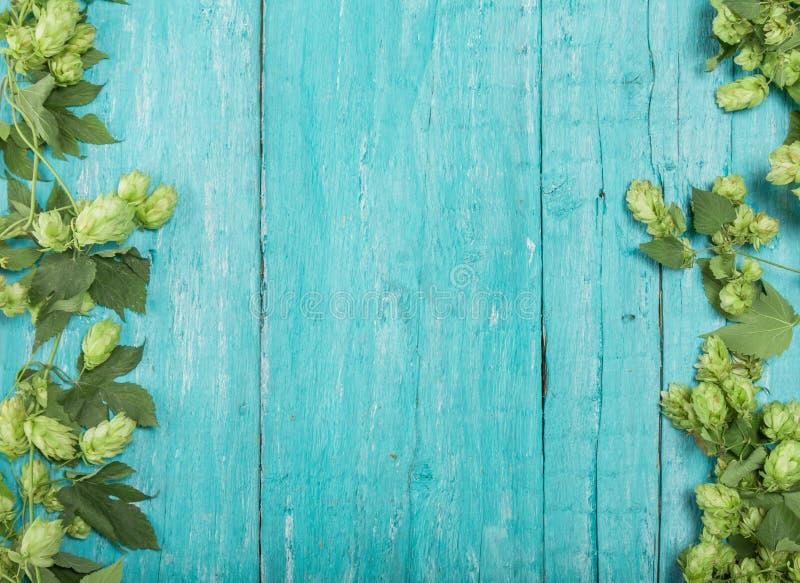 Frontera de ramas verdes del salto en fondo de madera rústico de la turquesa Concepto de producción de la cerveza Mofa para arrib foto de archivo libre de regalías