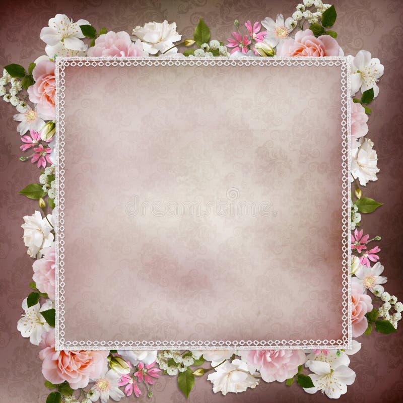Frontera de rosas y del cordón en fondo del vintage ilustración del vector