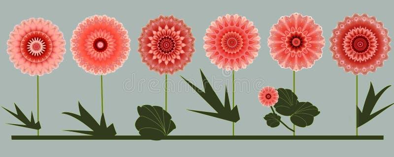Frontera de seis diseños digitales del arte de las flores color de rosa del verano stock de ilustración