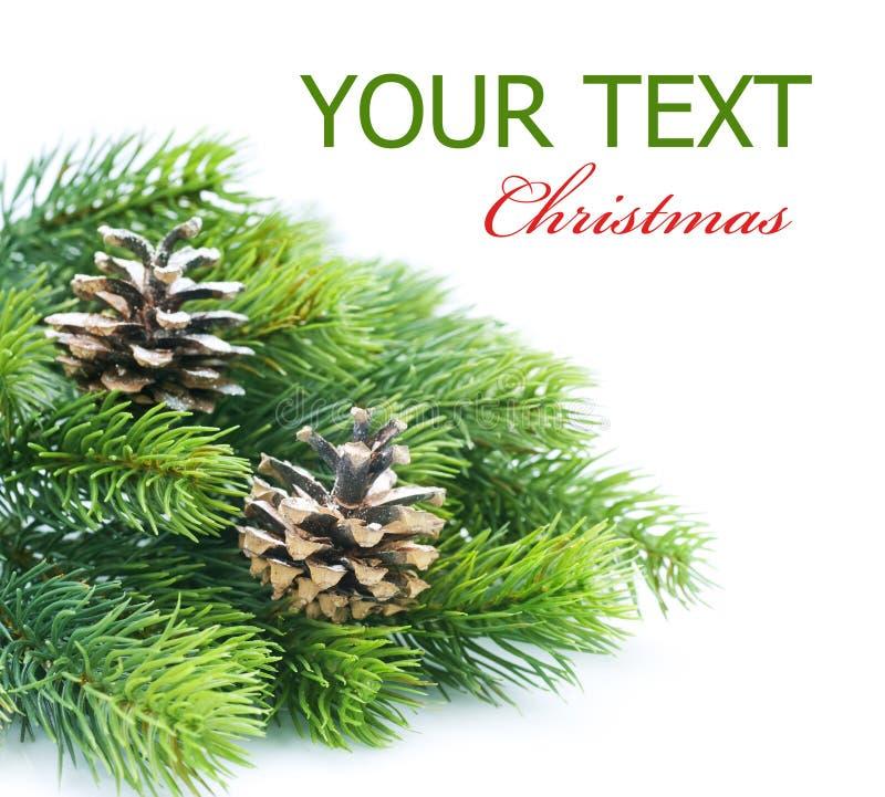 Frontera del árbol de navidad fotos de archivo libres de regalías
