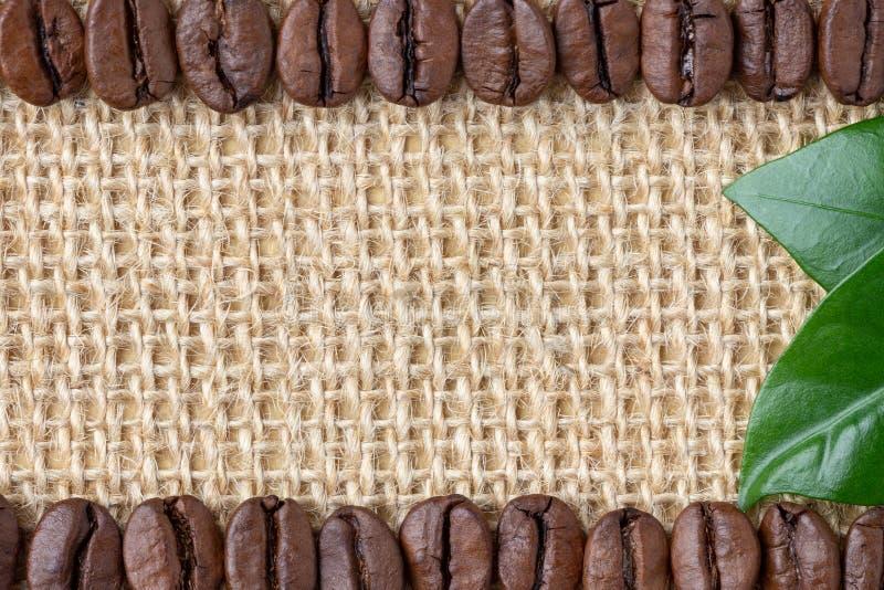 Frontera del café Habas y hoja sobre fondo de la arpillera imagen de archivo libre de regalías