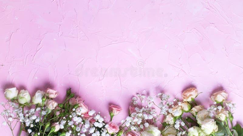 Frontera del gypsofila blanco fresco y flores color de rosa blancas en fondo texturizado rosado imagenes de archivo