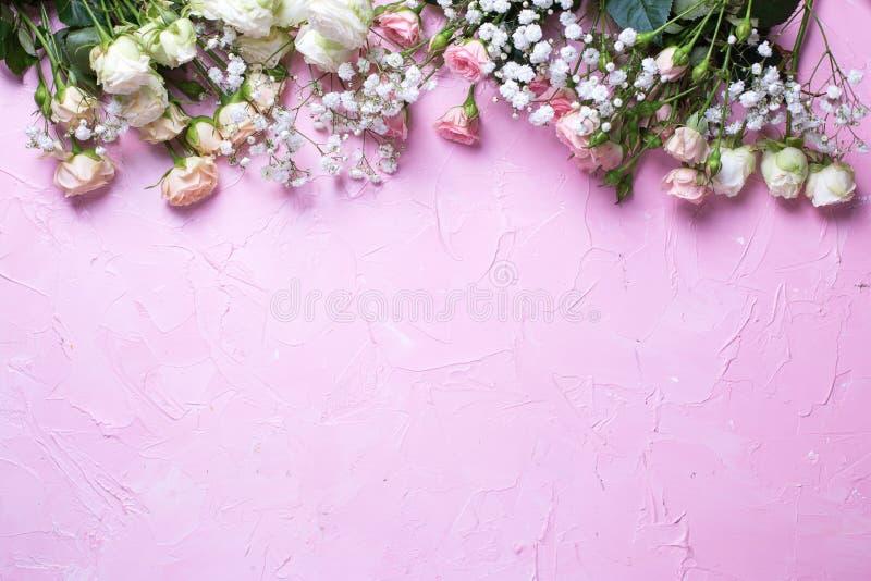 Frontera del gypsofila blanco fresco y flores color de rosa blancas en fondo texturizado rosado fotografía de archivo