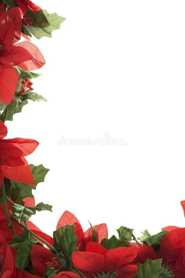 Frontera del Poinsettia de la Navidad fotografía de archivo libre de regalías