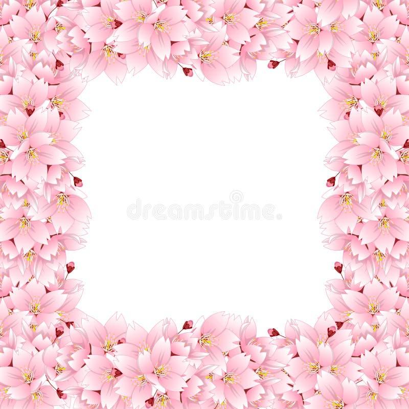 Frontera del serrulata del Prunus - flor de cerezo, Sakura Flor nacional de Japón Ilustración del vector Aislado en el fondo blan ilustración del vector