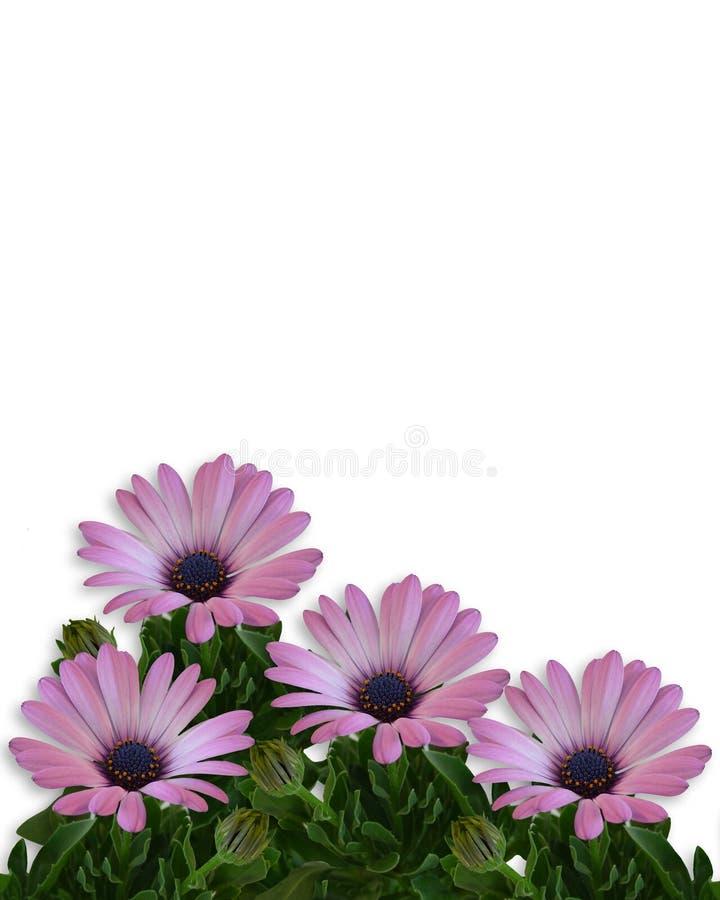 Frontera floral de la paginación de la margarita stock de ilustración