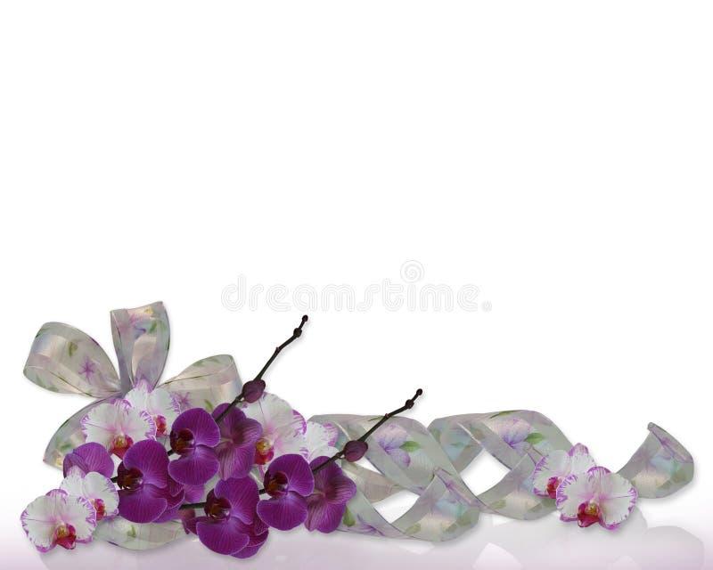 Frontera floral de las orquídeas imagen de archivo libre de regalías