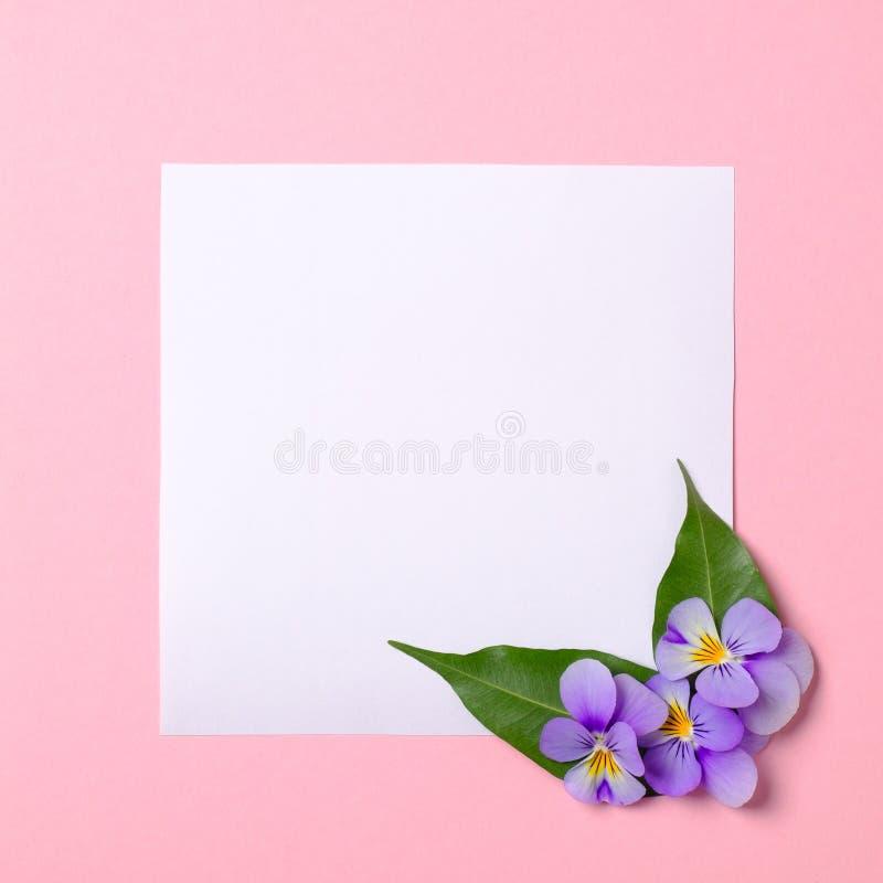Frontera floral del marco hecha del Libro Blanco en blanco, pétalos de las flores, hojas verdes en fondo de la primavera de la ac fotografía de archivo