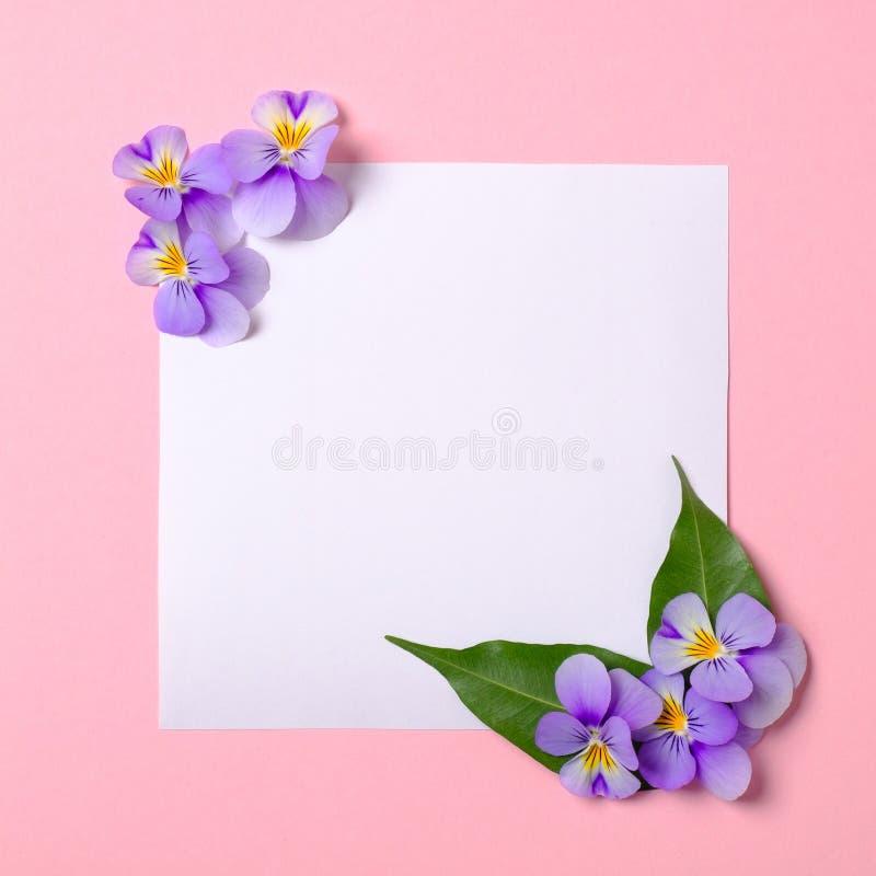 Frontera floral del marco hecha del Libro Blanco en blanco, p?talos de las flores, hojas verdes en fondo de la primavera de la ac imagenes de archivo