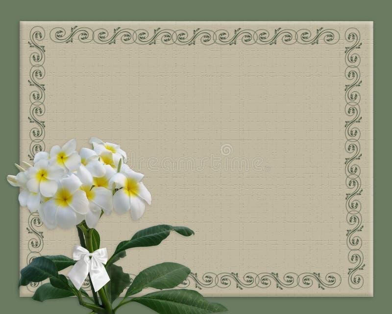 Frontera floral del Plumeria stock de ilustración