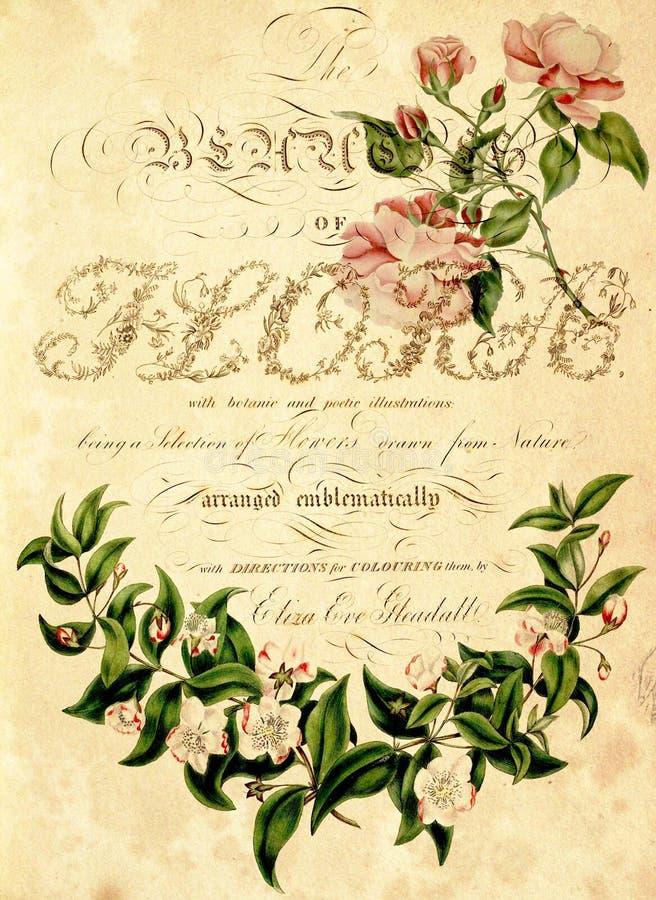 Frontera floral en fondo sucio foto de archivo libre de regalías
