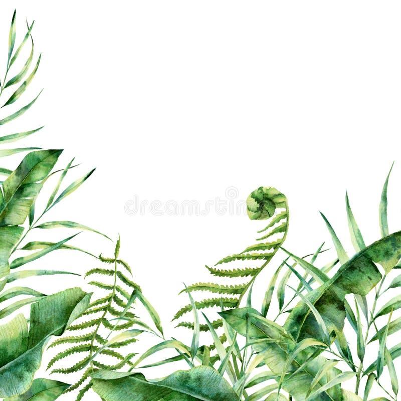 Frontera floral exótica de la acuarela Marco tropical pintado a mano con las hojas de la palmera, la rama del helecho, el plátano ilustración del vector