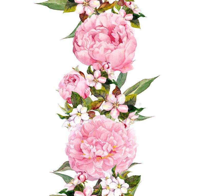 Frontera floral - flores y flor de cerezo rosadas de la peonía Repetición de la bandera romántica watercolor ilustración del vector