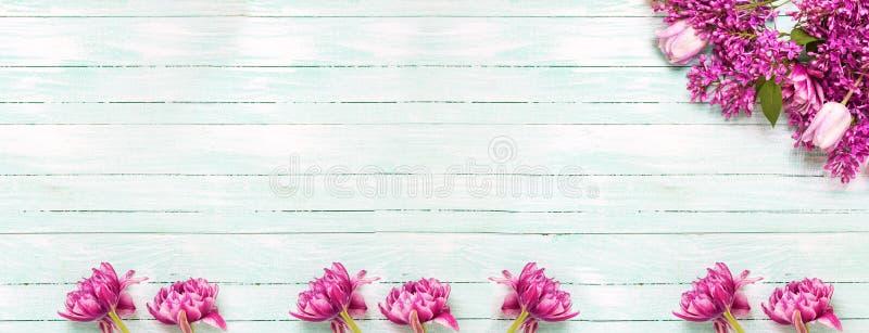 Frontera floral rosada fotografía de archivo