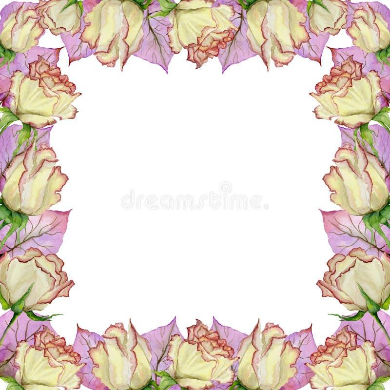 Frontera Hermosa De La Primavera Hecha De Flores Y De Hojas Color De ...