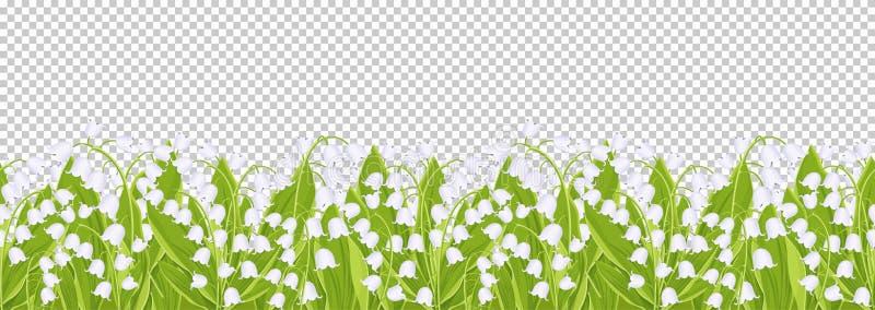Frontera inconsútil con el lirio de los valles blando de las flores de la primavera, bandera floral, marco, ejemplo del vector Fl libre illustration