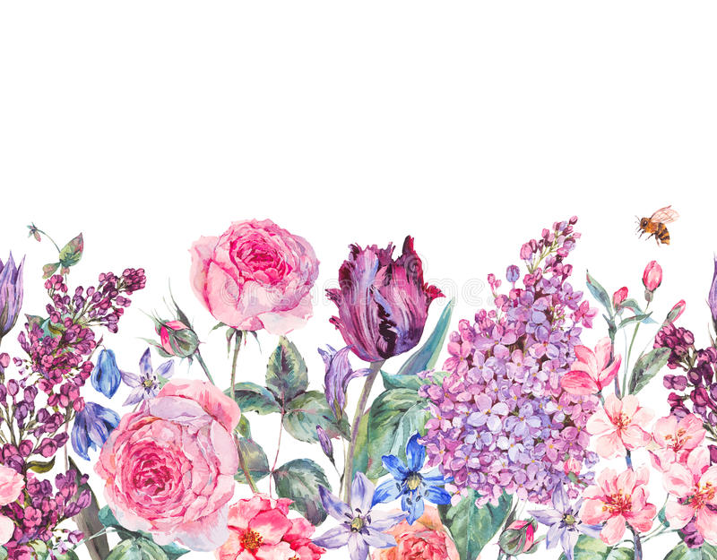 Frontera inconsútil de la primavera floral púrpura de la acuarela del jardín del vintage stock de ilustración