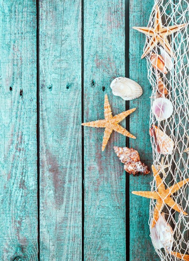 Frontera marina de la red con las cáscaras y las estrellas de mar foto de archivo libre de regalías