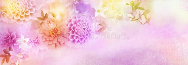 Frontera romántica hermosa de la dalia, de las rosas y de las flores de la orquídea en el fondo colorido del brillo para el jefe  libre illustration